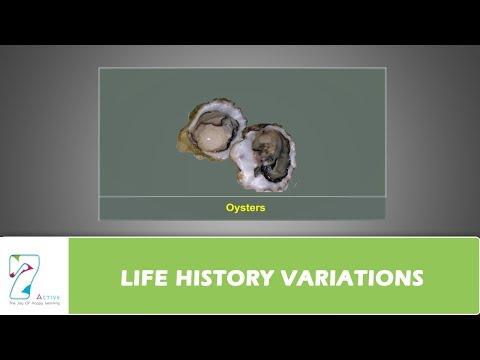 LIFE HISTORY VARIATIONS