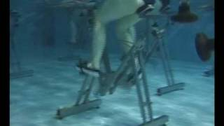 hydrocycling.avi