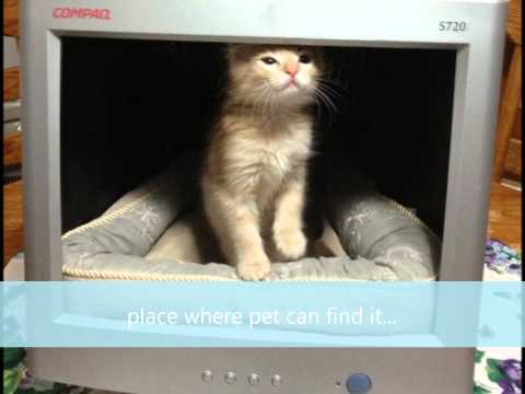 How to make a pet bed out of a old CRT monitor!