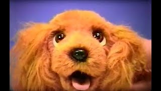 "Mel Birnkrant ""pt Puppy"" [paper Trained]"