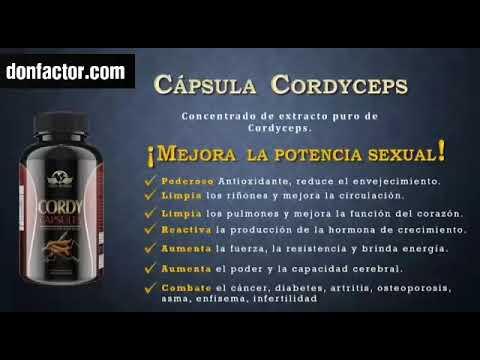 cápsulas de cordyceps y diabetes