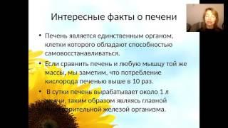Елена Бахтина Печень  Что ей нужно для счастья.