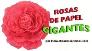 Cómo Hacer Rosas Gigantescas Enormes Grandes Con Papel Crepé