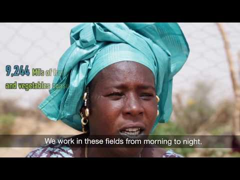 USAID Yaajeende  Nutrition Led Agriculture Impact Video