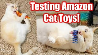 My cats review Amazon's most popular (and cheap) cat toys!