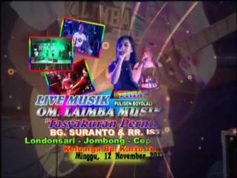 Kalimba live london(15)