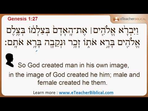 Why Did God Say Let Us Make Man In Our Image Biblical Hebrew Q A With Eteacherbiblical Com Youtube