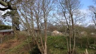 Camping at Jersey Zoo