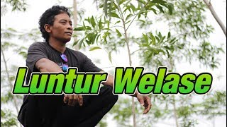 Luntur Welase - Demy | Cover by Kampung Songo
