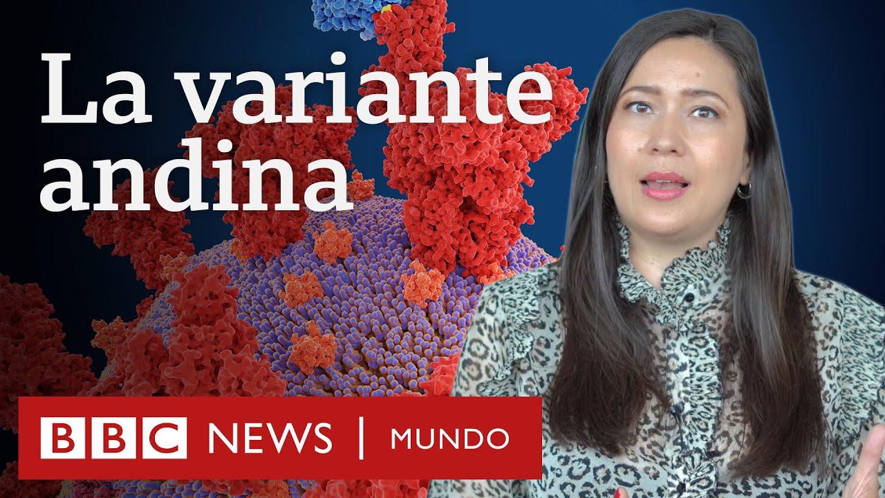 Coronavirus: qué se sabe de la variante lambda (andina) que circula en América Latina | BBC Mundo