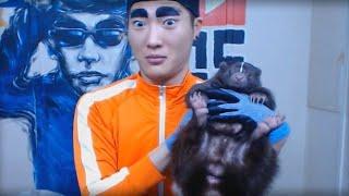 GOD-TUK - Skunk (스컹크 합방)