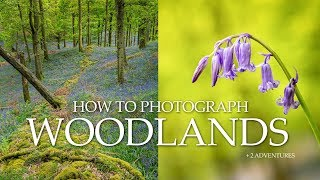 How to Photograph Woodlands + 2 adventures