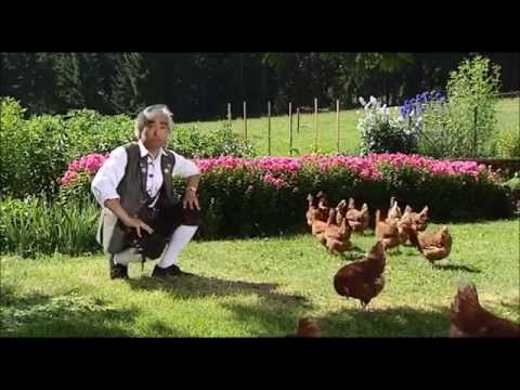 Takeo Ischi / Ishii / 石井健雄 - New Bibi Hendl (Chicken Yodeling) Original
