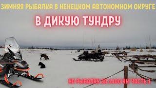 ЗИМНЯЯ РЫБАЛКА В ТУНДРЕ НАО ЧАСТЬ 1 WINTER FISHING IN THE TUNDRA
