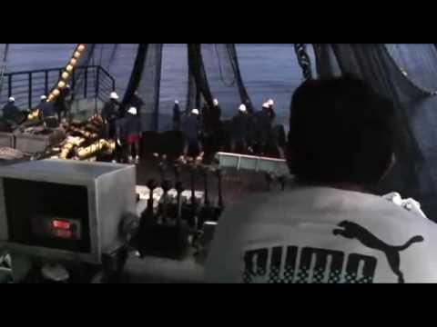 Fishing in a solomon island tuna seiner youtube for Solomons island fishing report