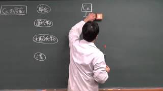 【化学】無機化学⑪(3of3)~アルカリ土類金属元素の性質(後編)~