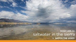 Mono Lake, CA | The Eastern Sierra Mountain Sea is Full of Wow!