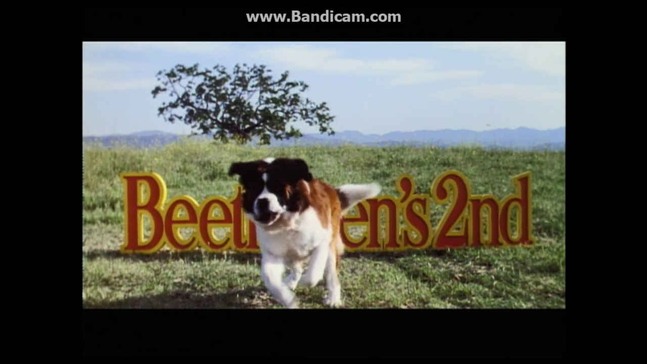 Download Beethoven's 2nd 1993 Theatrical Trailer