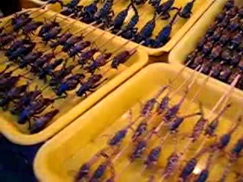 Beijing, China - Insects for sale