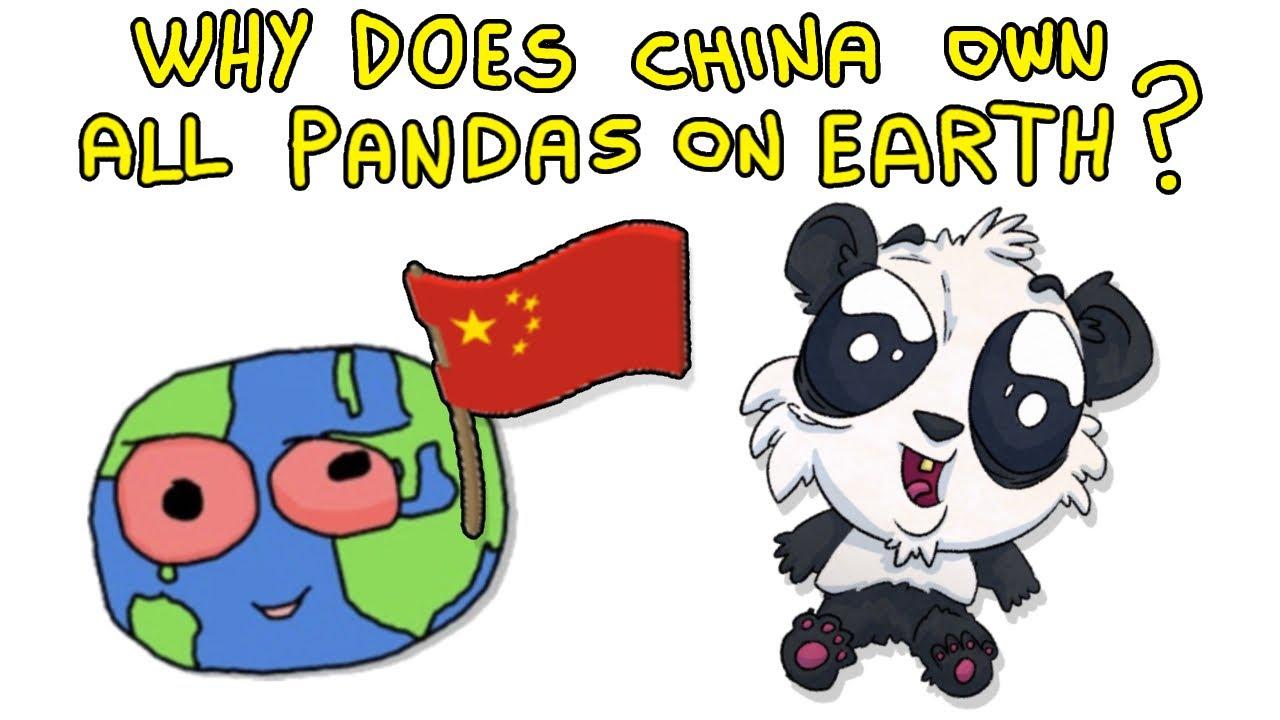 Who Owns Pandas?