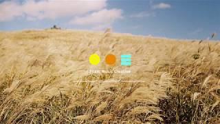 [Playlist] 동화같은 날들! 봄노래 (3song…