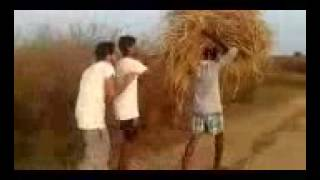 Very Funny Videos In Bihari Boys Laugh And Laugh Latest Comedy 3GP