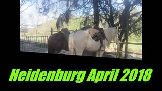 2018-3-7_bis_8 Heidenburg