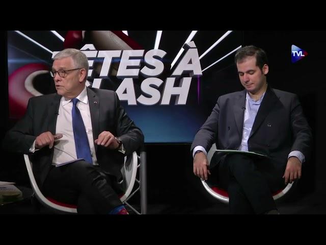 #SaccageParis 2 - Patrick Mignon sur TVL   9 avril 2021