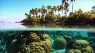 Tempted Extended Mix Markus Schulz Feat Sarah Howells