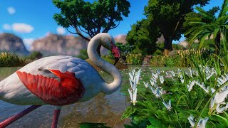 Greater Flamingo Pond! | Planet Zoo