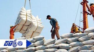 Rủi ro khi xuất khẩu gạo sang Trung Quốc | VTC