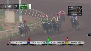 Vidéo de la course PMU DHIRANA