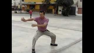 Tao Long - Profesor Gary - Danza Basica de Tigre