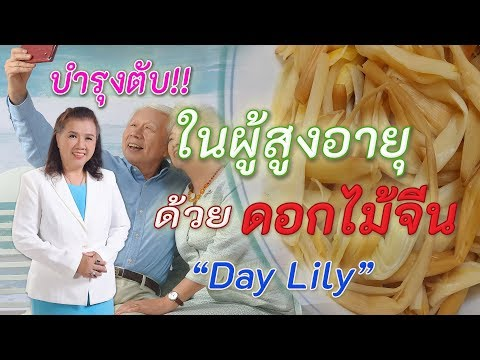 บำรุงตับ!! ในผู้สูงอายุ ด้วยดอกไม้จีน | day lily | พี่ปลา Healthy Fish