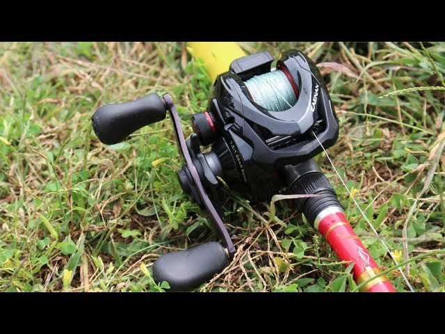 The Shimano Caenan | This Reel catches GIANTS...