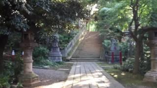 Hikawa shrine, Quick Tokyo tour.