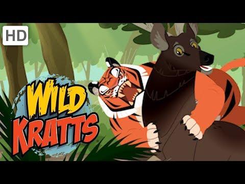 Wild Kratts 🐯 Rescuing Endangered Species 🐼| Kids Videos