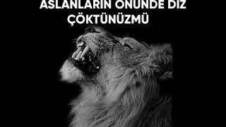 Çakalların hükmü aslan ayağa kalkana kadardır.