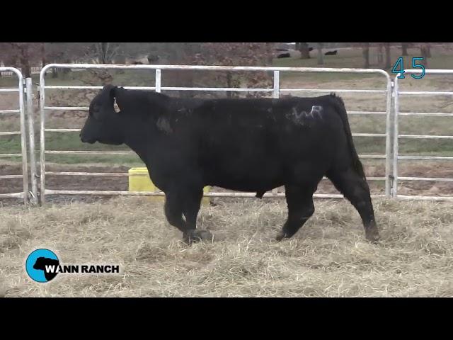 Wann Ranch Lot 45