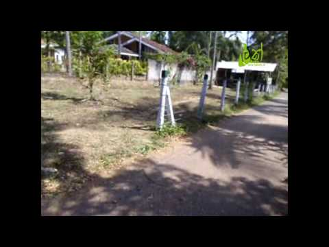 15P Valuable Land with for Sale in Kuliyapitiya.