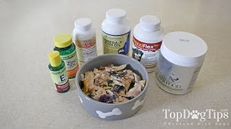 Dog Supplements for Homemade Dog Food (Why and What You Need)