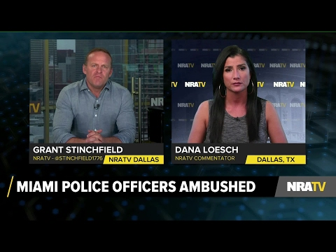 Stinchfield | Dana Loesch: Career Criminals Protected by Corrupt Politicians - 3/28/17