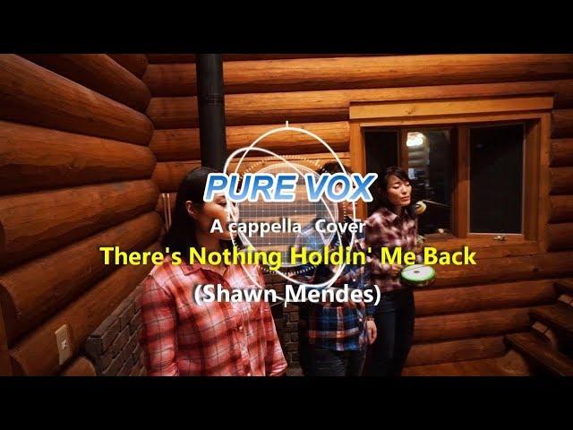 【洋楽カバー アカペラ】Shawn Mendes - There's Nothing Holdin' Me Back