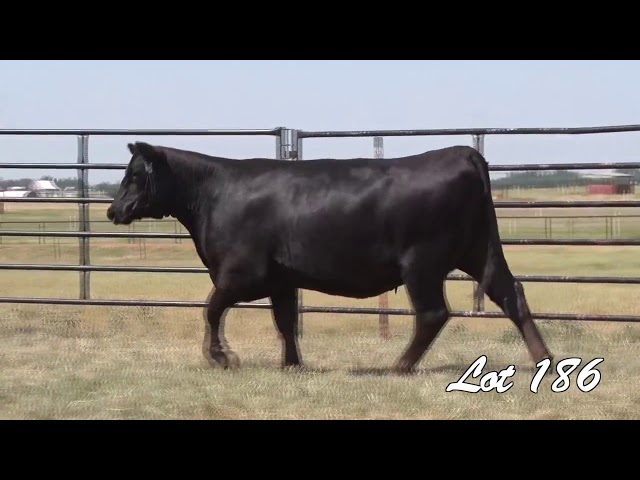 Pollard Farms Lot 186