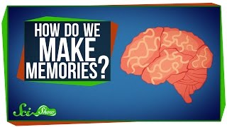 How Do You Make Memories?