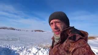 Трофейная Щука подарок к новому году Рыбалка на реке Куланотпес