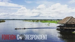Download The Dangerous World Of Ayahuasca | Foreign Correspondent Mp3 and Videos