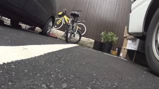 【猫目線動画】商店街 路地裏 / 広島 CAT STREET VIEW 尾道編