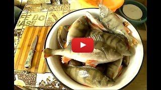 видео Рыбы Байкала: разнообразие видов