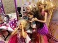 Barbie Haircut! Haley and Ally!